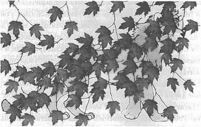 Рис. 5. Лев, проглядывающий через листву