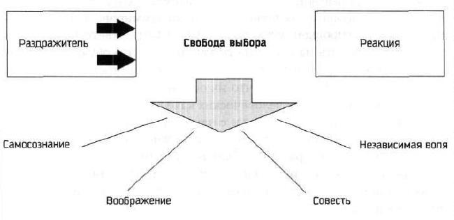 03. Проактивная модель
