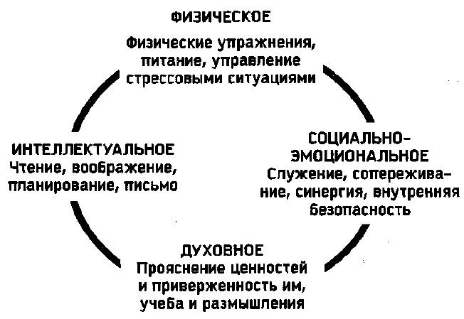 17. Четыре фактора обновления