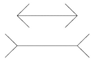 Рис. 2. Измерив линии, вы (ваша Система 2), обрели новое убеждение, линии одной длины