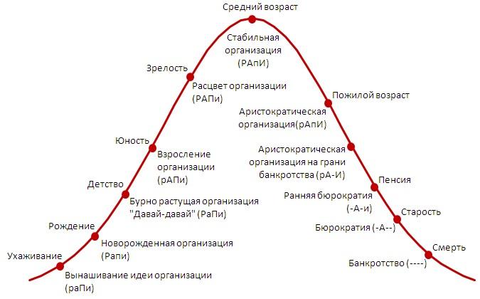 02. Жизненный цикл организации в кодировке РАПИ