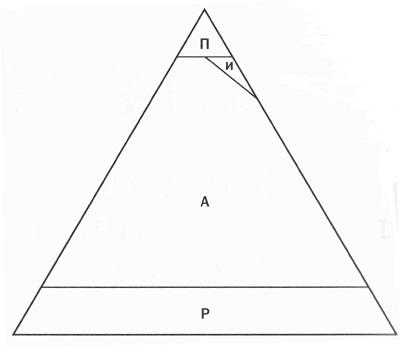 07. Распределение ролей РАПИ по иерархической пирамиде