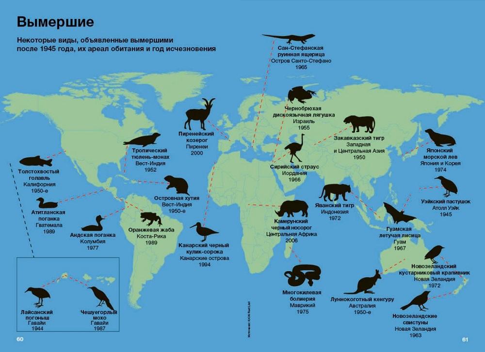 Вымершие животные и ареал их обитания