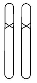Рис. 5. Гомозиготный мутант