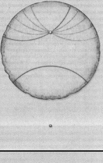 Рис. 6. Параллельные линии в гиперболическом и евклидовом пространствах