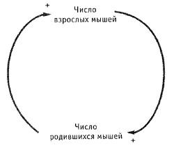 Рис. 11. Пример петли обратной положительной связи – самоусиливающаяся система