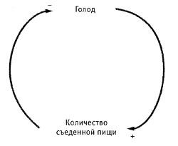Рис. 12. Пример системы с петлей обратной отрицательной связи — саморегулирующаяся система