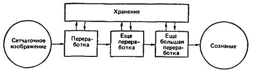Рис. 1. Модель восприятия, основанная на теории внутренней переработки информации