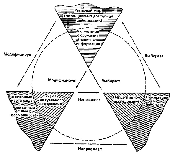 Рис. 4. Схемы в составе когнитивных карт