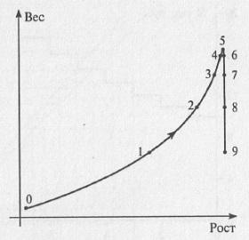 Рис. 4.2. Фазовая плоскость с фазовой траекторией для динамической системы домашняя кошка