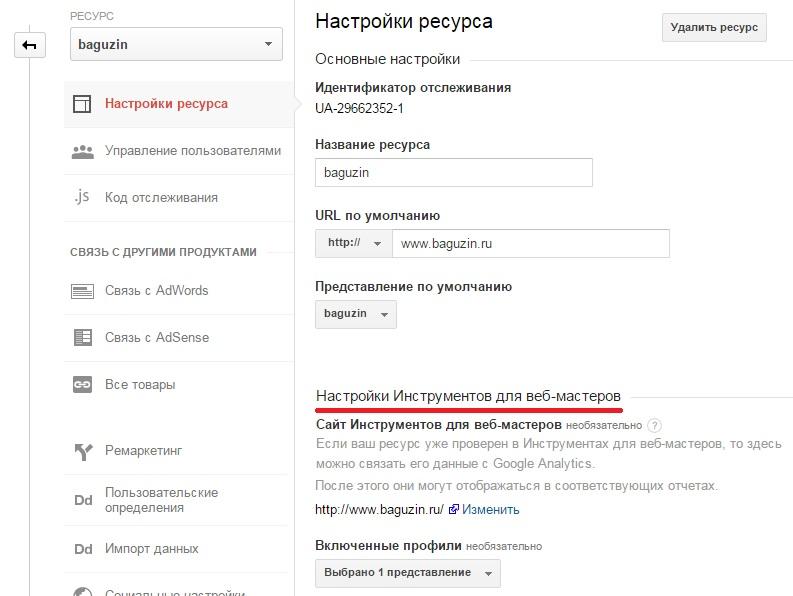 Рис. 5.26. Настройки Инструментов для веб-мастеров