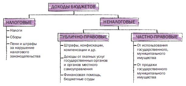 Рис. 1. Виды доходов бюджетов