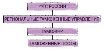 Рис. 21. Таможенные органы РФ