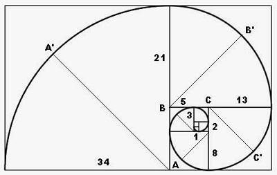 Рис. 1. Чудесная спираль, основанная на золотой пропорции