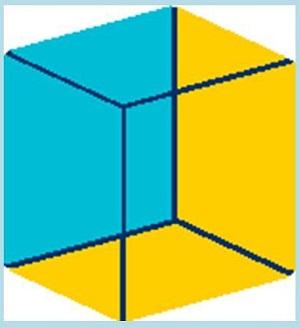 Рис. 4. Куб Неккера