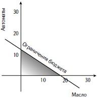 Рис. 1. Бюджетное ограничение делает область допустимых значений треугольной