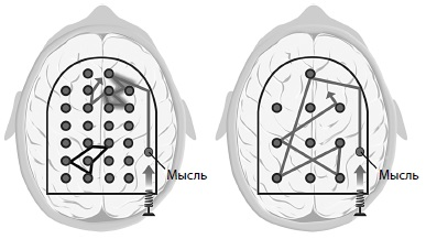 Рис. 1. Системы мозга и игра Пинбол