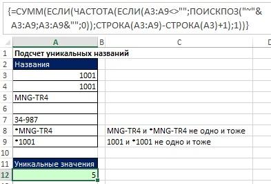 Рис. 17.13. Формула подсчета уникальных значений, распознающая звездочку, как знак