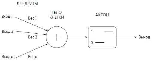 Рис. 3. Модель перцептрона